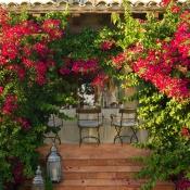 Rosa Gres Vintage Color Brick